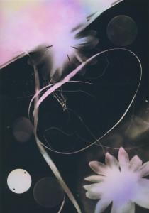 photogram#6